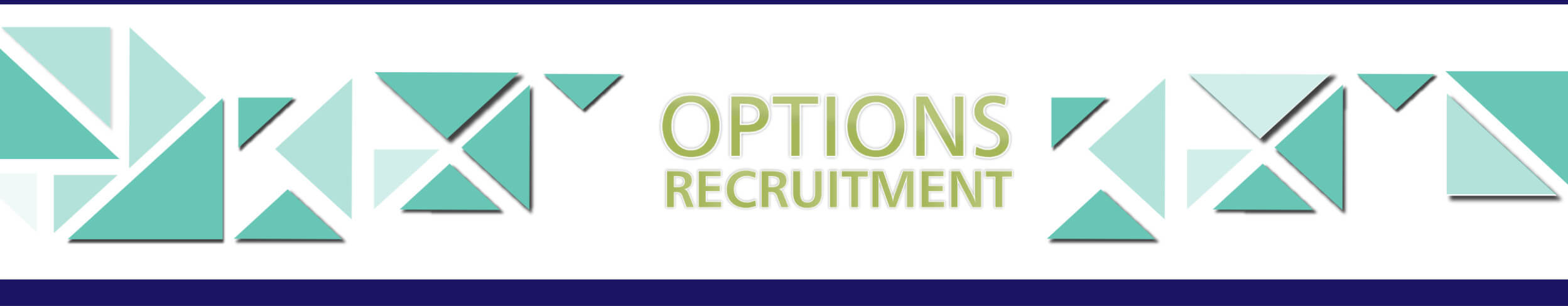 Page Header - Specialist Recruitment and Executive Search - Options in Personnel (PTY) Ltd